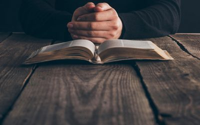 Top 11 Best Bible Reading Plans